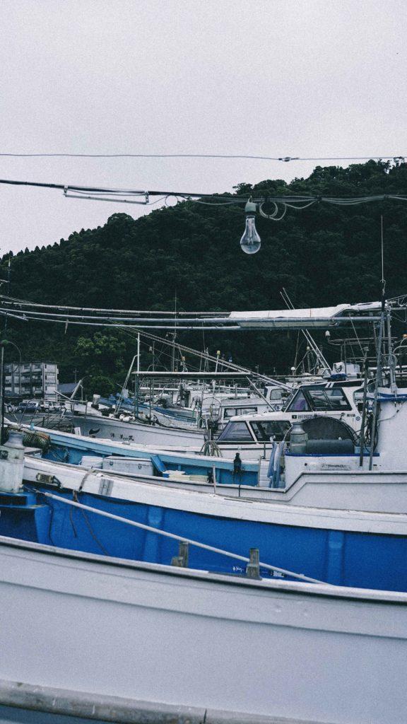 山川港の漁船②